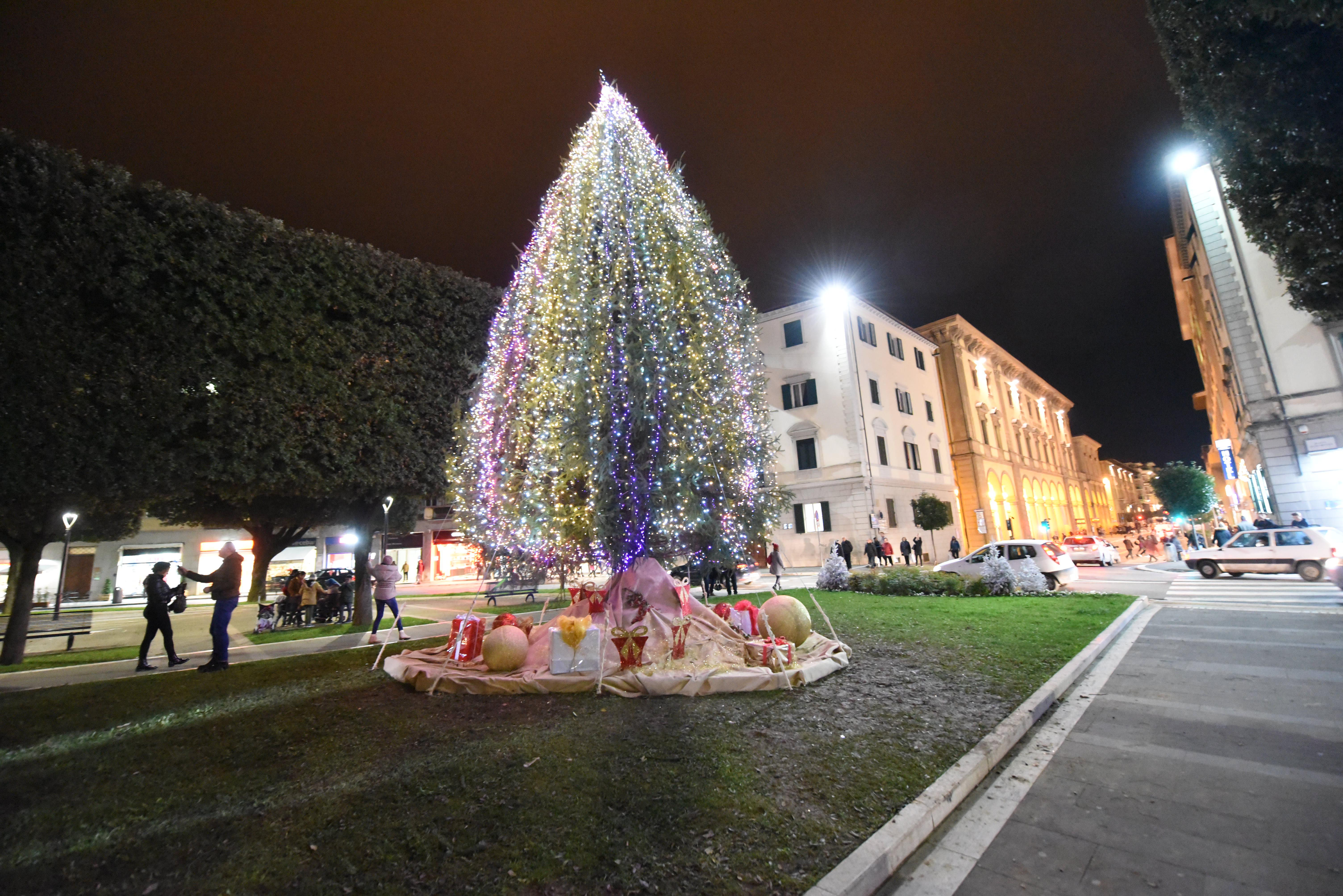 Albero Di Natale 6 Mt.Piazza Guido Monaco Acceso L Albero Di Natale Foto Attualita