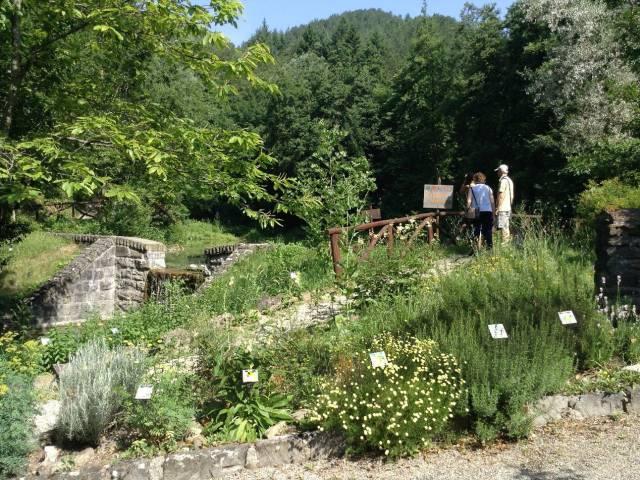 Giardino Botanico.jpg