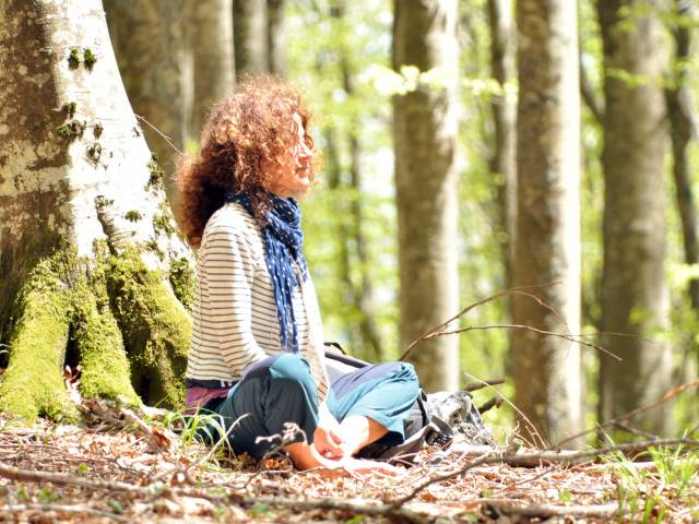 Forest bathing Parco nazionale.jpg
