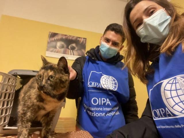 volontari oipa con gatta.jpg