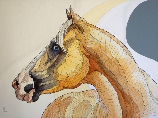 opera 1 - Essere Cavallo - Il cavallo Palomino.jpg