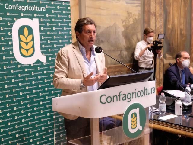 sindaco Mario Agnelli - Castiglion Fiorentino.JPG
