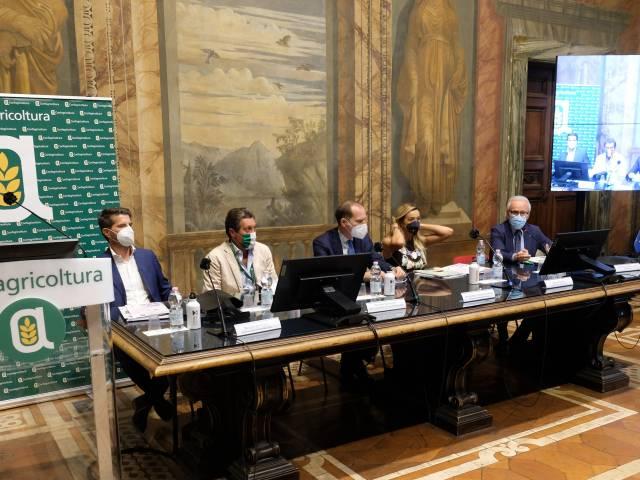 conferenza stampa XXV Premio Fair Play Menarini.JPG