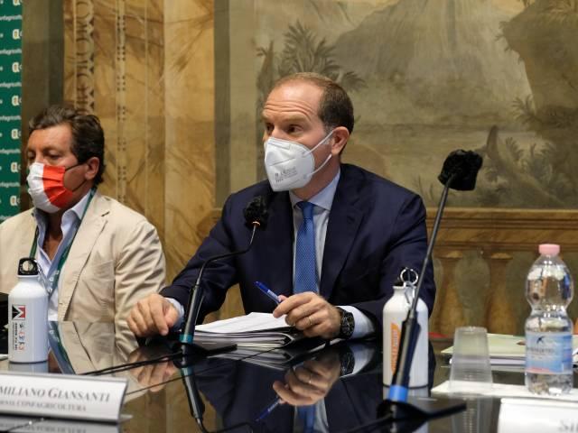 Massimiliano Giansanti Confagricoltura.JPG