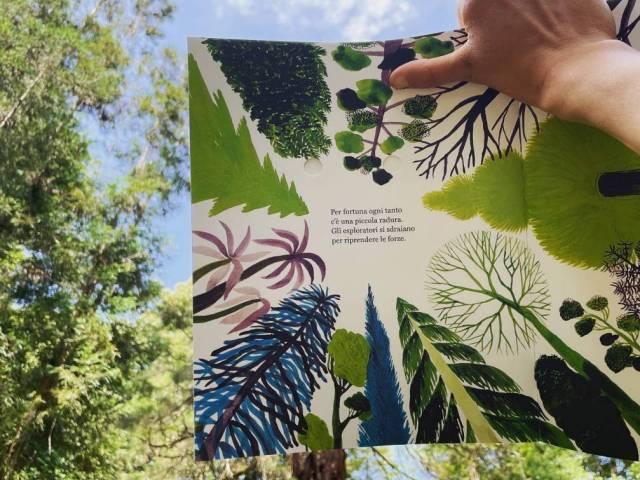 Siamo foresta (2).jpg