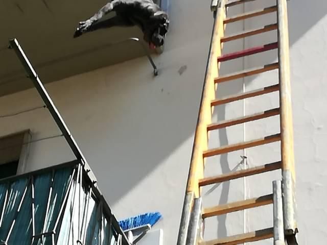 salvataggio cane 4.jpeg